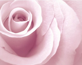 Pale Pink Rose Art Print • Large Wall Art • Romantic Art Photography Print Also Available on Canvas