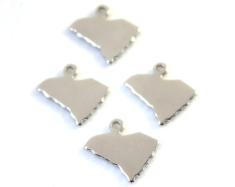 2x Silver Plated Blank South Carolina State Charms - M070-SC