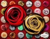 Roses Circles 1 inch - Instant Download - Glass Pendant - Magnet - Button - Circle Images - bottle cap