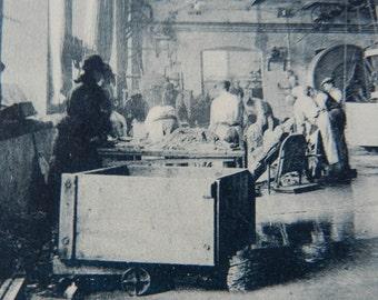 """REDUCED TO CLEAR- Collection """"Pour L'Enseignement Vivant"""" La Ganterie - Plate 5 Lavage, Rincage, Decrassage des peaux  - French - 1920's"""