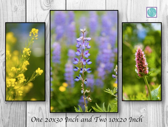 3 Panel Large Canvas nature artwork blue red yellow wildflower flower art wall print living room home decor nursery bright art multiple