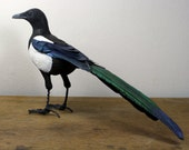 Hand made clay, paper and wire Magpie sculpture.