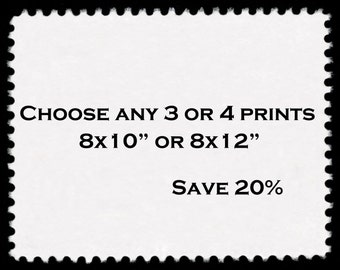 Save 20% On any three or four 8x10 or 8x12 Prints