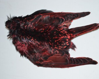 One dyed RED starling bird skin- fly fishing, crafts, etc