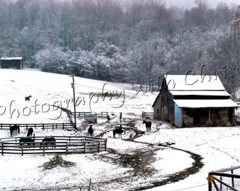 Tennessee Winter