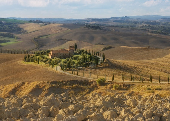 The landscape in the famous Val d'Orcia is extremely enchanting: everywhere you look, endless golden wheat fields, rolling hills one after the other, avenues of cypress trees along curvy country roads and isolated rural homes and farmhouses.