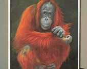 Amy Orangutan ~  Fine Art Greetings Card
