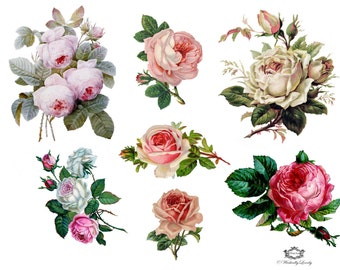 Vintage Roses assorted pack  of 7 Wickedly Lovely Skin Art Temporary Tattoos