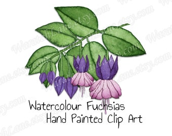 Watercolor Clip Art Flowers clipart flowers Floral clip art Fuchsia Branch Leaves watercolour clip art for wedding