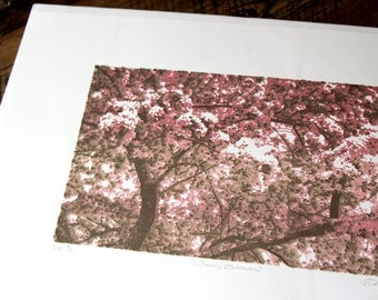 Cherry Blossoms Screenprint
