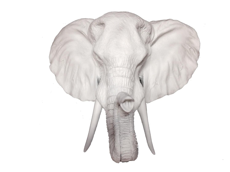 L phant blanc t te statue de montage mural t te - Tete d elephant mural ...
