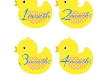 Baby Month Stickers, Ducks, Monthly Stickers, Monthly Baby Stickers, Baby Shower Gifts, Baby Month Sticker Gender Neutral, U06