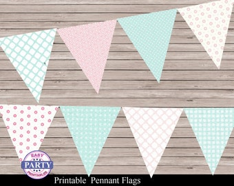 Shabby Chic Party Pennant Flag Banner, pink and blue, Instant Download, banner, any occasion, coordinating items available, DIY, digital
