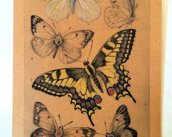 Butterfly Botanical Print Hand Painted Note Card