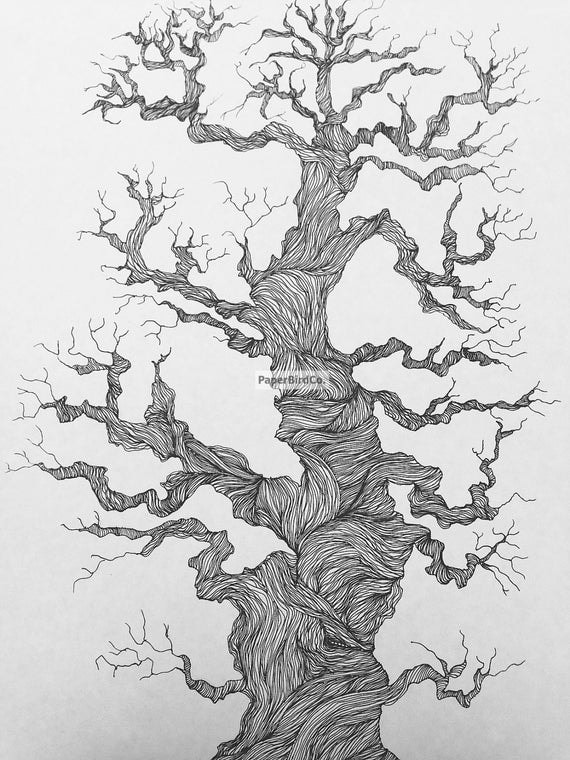 Contour Line Drawing Tree : Original tree of life ink drawing in b w by paperbirdco