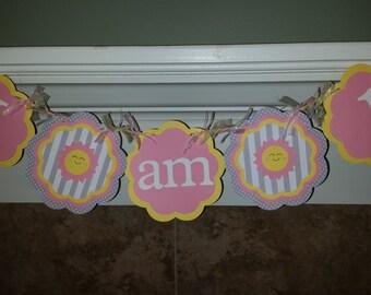 My Little Sunshine - I AM ONE High Chair Banner