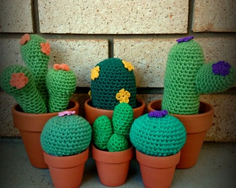 5 Small and Large Crochet Cacti Patterns PLUS flower pattern