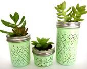 Trio of Succulent Mason Jar Planters