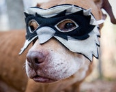 Pit bull superhero Photography Color Print