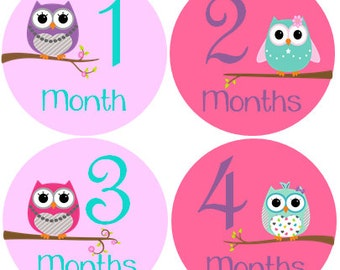 Monthly Baby Stickers Girl, Milestone Stickers, Month Stickers, Baby Month Stickers, Baby Stickers, Owls #113