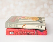 Vintage Teen Novel Then Came November by Nan Gilbert (1963)