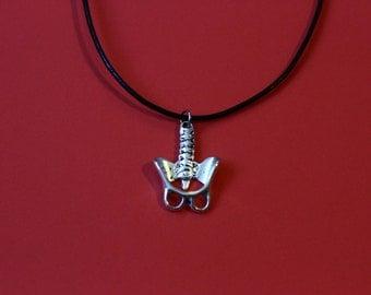 Detailed Zinc Alloy Pelvis and Backbone Necklace