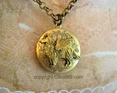 COLLIE / SHELTIE Angel Locket Necklace.Collie Sheltie Guardian Angel Jewelry Gifts. Pet Memory Jewelry Gift. Rough Collie Shetland Sheepdog