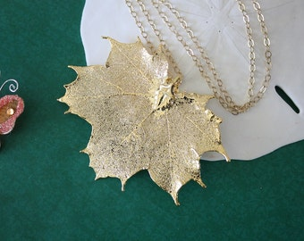 Gold Leaf Necklace, Real Leaf Necklace, Maple Leaf, Gold Maple Leaf, Sugar Maple Leaf, 13 LC