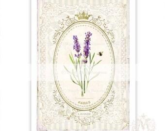 French Lavender print, vintage lavender print, lavender, home decor, botanical print, bee, lace, Paris, vintage illustration, digital print