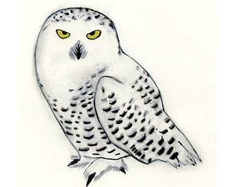 Snowy Owl art I - Owl art print Snowy Owl -  4 for 3 SALE Anton -  4 x 6 print