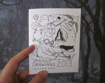 Various Drawings 2013 Zine