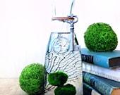 Large Marimo Moss Ball Terrarium / Aquarium Moss Bottle Biosphere Kit