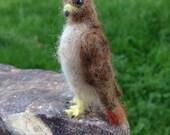 Needlefelt Red Tailed Hawk, Miniature