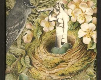 Bird Calls Original collage art