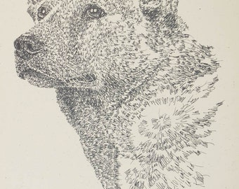 Australian Cattle Dog art portrait drawing from words. Your dog's name added into art FREE. Great gift. Signed Kline 11X17 Lithograph 46/500