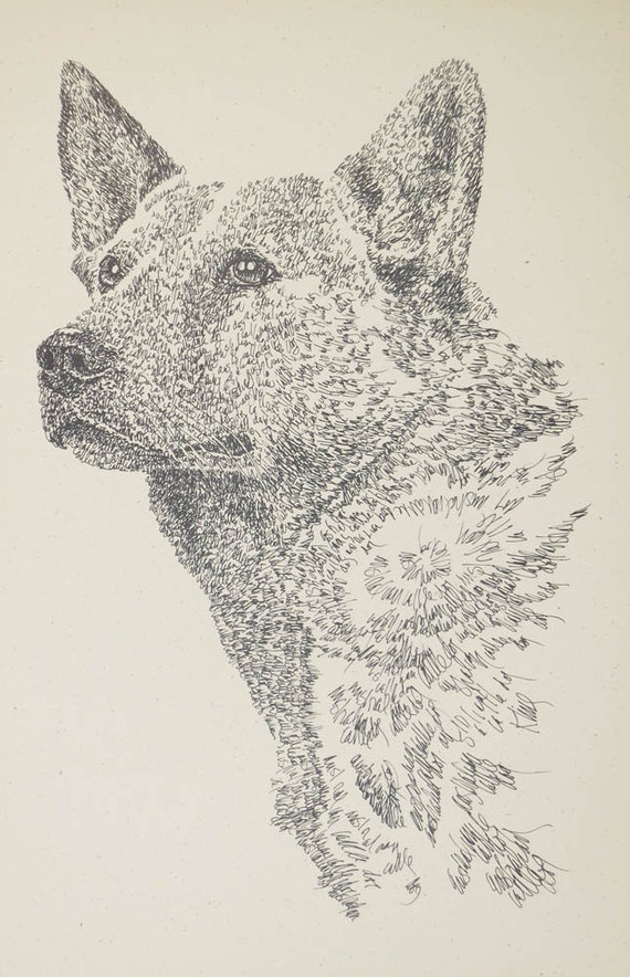Australian Cattle Dog art portrait drawing from words. Your dog's name added into art FREE. Great gift. Signed Kline 11X17 Lithograph 44/500
