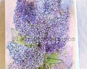 Lilacs Watercolor Botanical Nature Art Card Blank Birthday All Occasions