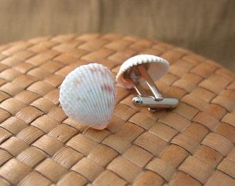 Sea Shell Cuff Links