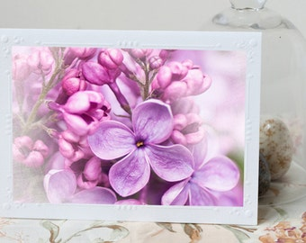 Lilac Photo Notecard - Lilac Blossom Note Card, Floral Photo Notecard, Stationery, Blank Notecard