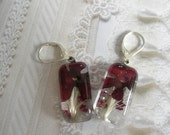 Red Verbena, Maroon Alyssum, Wispy Grasses-Pressed Flower Glass Rectangle Leverback Earrings-Gifts Under 25-Symbolizes Enchantment