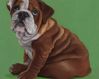 Custom Pet Portrait - oil, 40x40