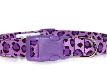 Purple Panther,,,Purple Leopard Print Dog Collar