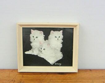 Vintage Bradley Currey Photograph White Kittens