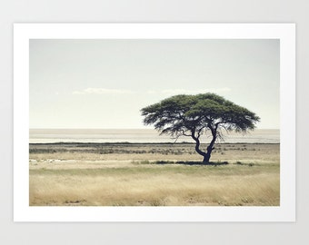 African Tree Photography Print for Home/Office/Nursery Decor