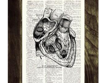 Summer Sale Heart section Anatomy Wall art Dictionary Print on Vintage Encyclopedic gift print Human heart Anatomy art SKA039