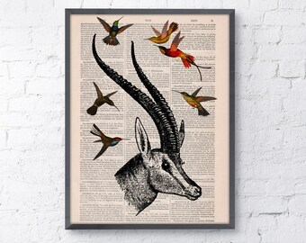 Summer Sale Antelope head with hummingbirds Wall art collage on Upcycled Book page Print Wall decor Art giclee Print bird  ANI205