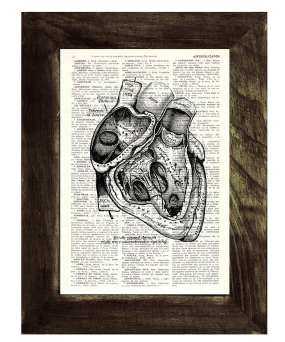 Heart section Anatomy Wall art Dictionary Print on Vintage Encyclopedic gift print Human heart Anatomy art SKA039