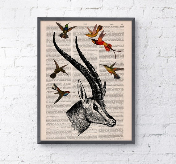 Spring Sale Antelope head with hummingbirds Wall art collage on Upcycled Book page Print Wall decor Art giclee Print bird  BPAN205