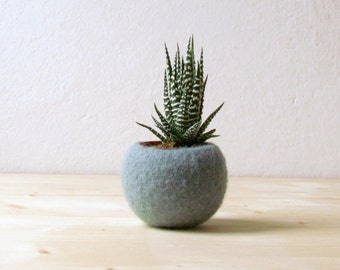 Succulent planter / air plant holder / cactus pot / plant vase / modern decor / winter decor