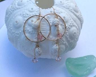 White Shells in Gold Hoops